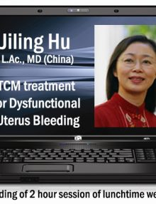 laptop-computer_Hu-Uterus-Bleeding